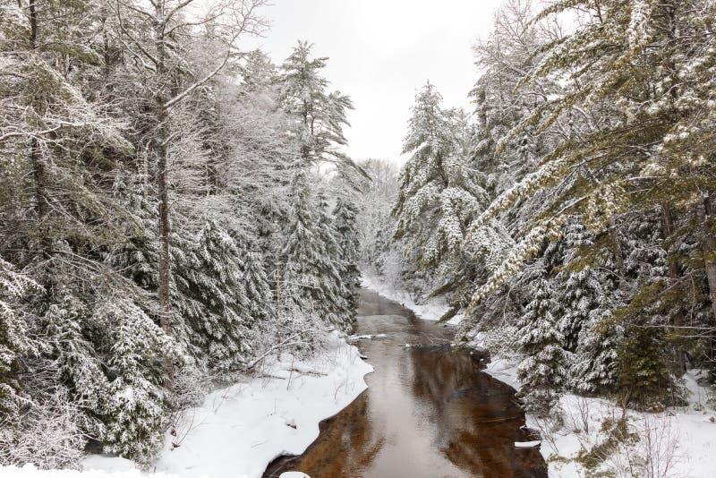 Górna półwysep rzeka w zimie, Michigan obrazy royalty free