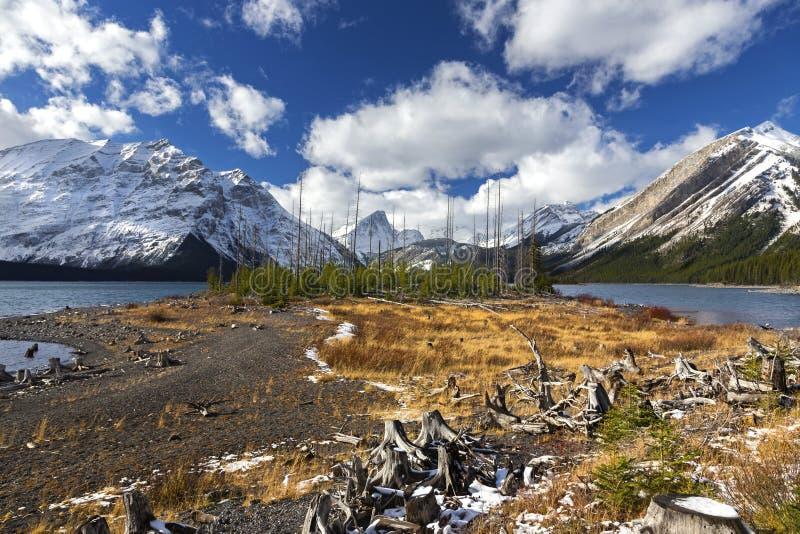 Górne Kanananskis Jeziorne Panoramiczne Krajobrazowe Skaliste góry Kanada obrazy royalty free