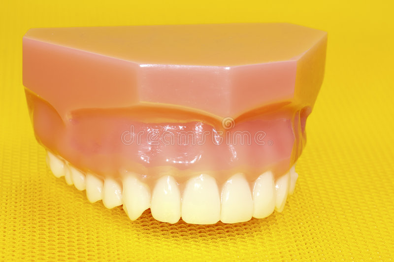 górne zęby. zdjęcia royalty free