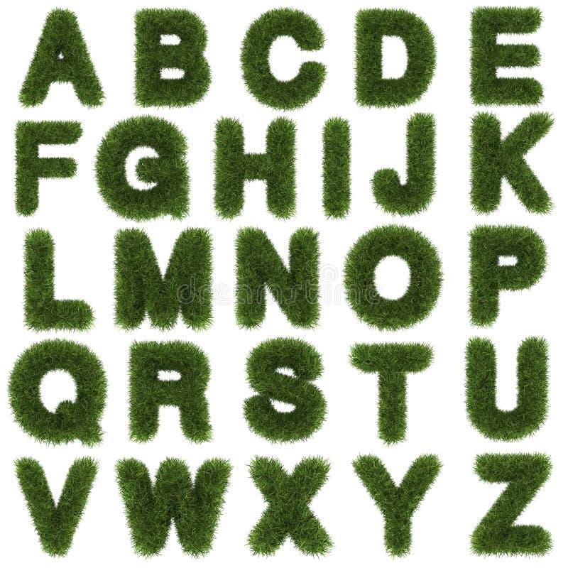 górni listy zielonej trawy abecadło odizolowywający dalej zdjęcie stock