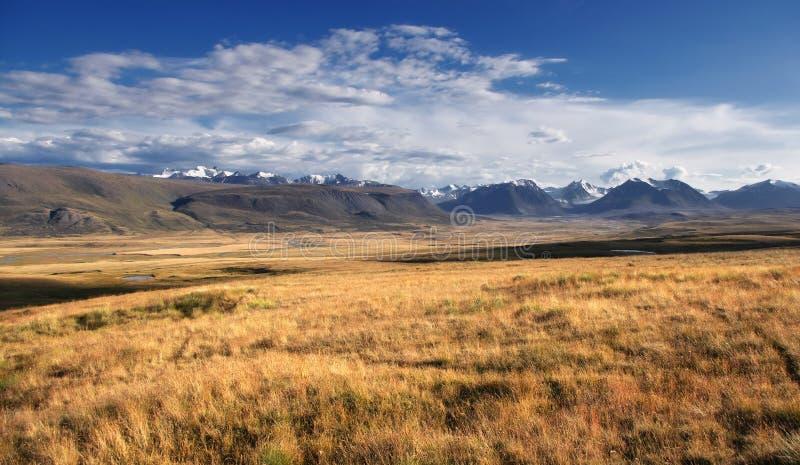 Górska rzeczna dolina z żółtą trawą na tle śnieg zakrywał wysokie góry i lodowów zdjęcie royalty free