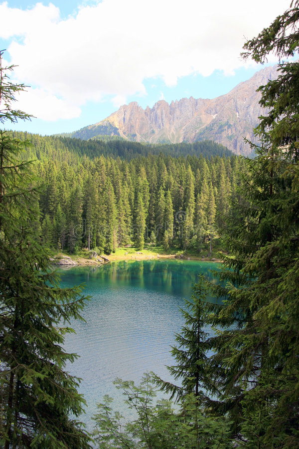 górskich drewna sosen jezioro fotografia royalty free
