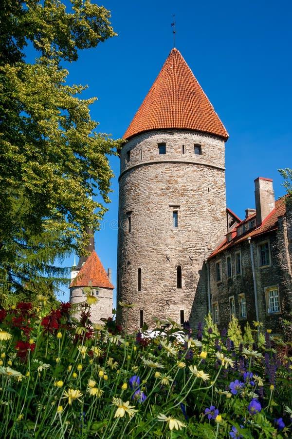 Góruje Tallinn. Estonia zdjęcia stock