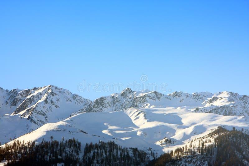 góry śniegu alpy szwajcarskie fotografia royalty free