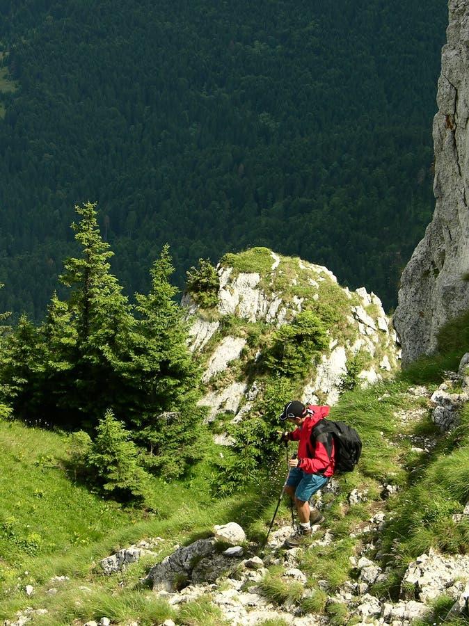 góry carpathian kroków zdjęcie royalty free