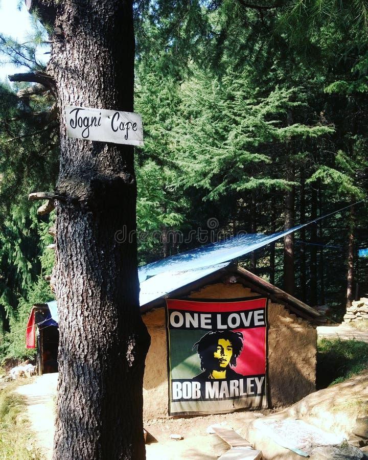 Góry kawiarnia Manali zdjęcia royalty free