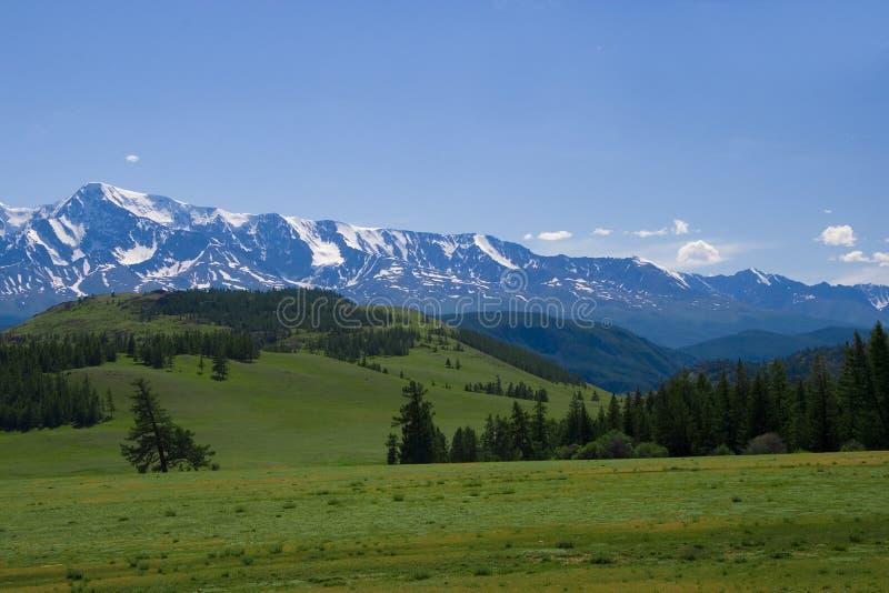 góry krajobrazowa łąkowa natura fotografia royalty free