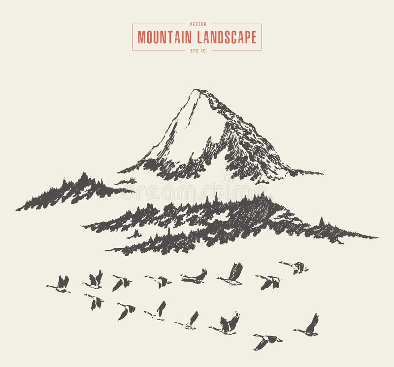 Góry krajobrazowy jedlinowy lasowy wektor rysujący nakreślenie ilustracja wektor