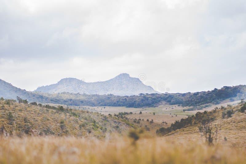 Góry na horyzoncie obrazy royalty free