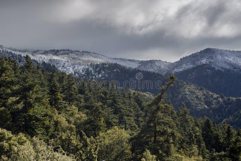 Góry na zimie, chmurzą dzień Peloponnese, Grecja obrazy stock