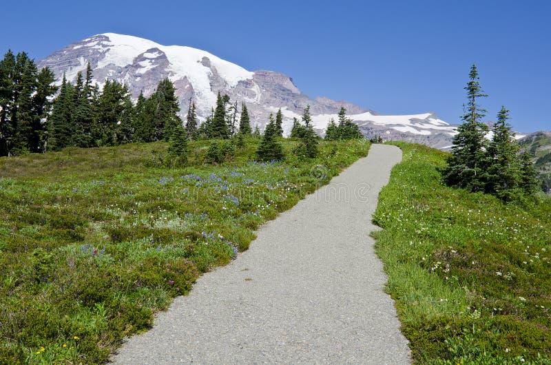 góry park narodowy dżdżysty Washington fotografia stock