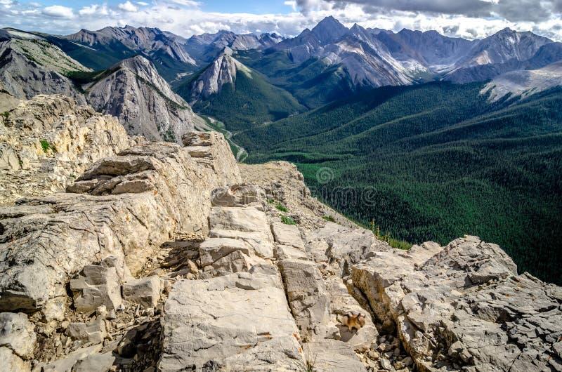Góry pasma widok w jaspisie NP z chipmunk w przedpolu zdjęcie royalty free
