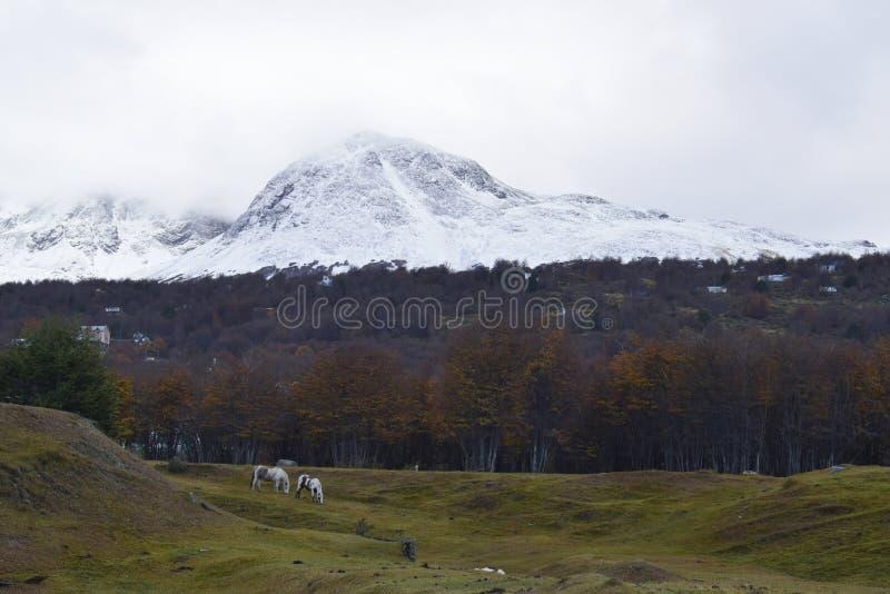Góry południe Patagonia Argentyna w Ushuaia, Tierra Del Fuego zdjęcia stock