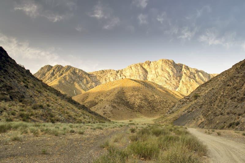 Góry południowy Kirgistan obrazy stock