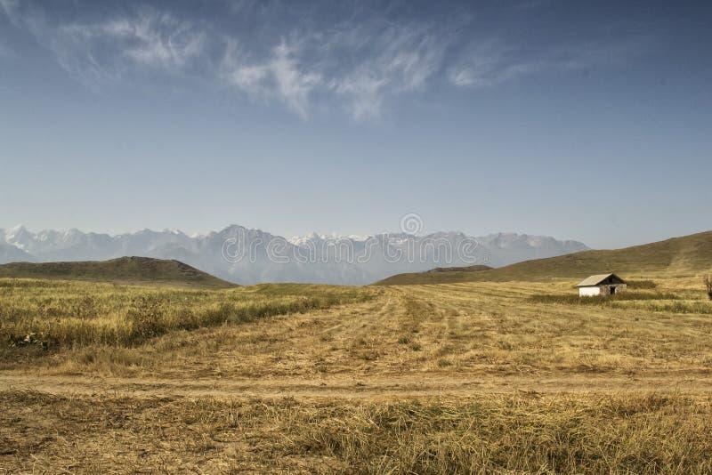 Góry południowy Kirgistan zdjęcie royalty free