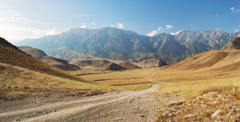 Góry południowy Kirgistan fotografia royalty free