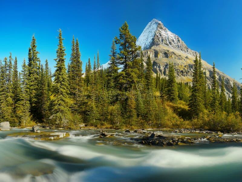 Góry Robson Kanadyjskie Skaliste góry obraz royalty free