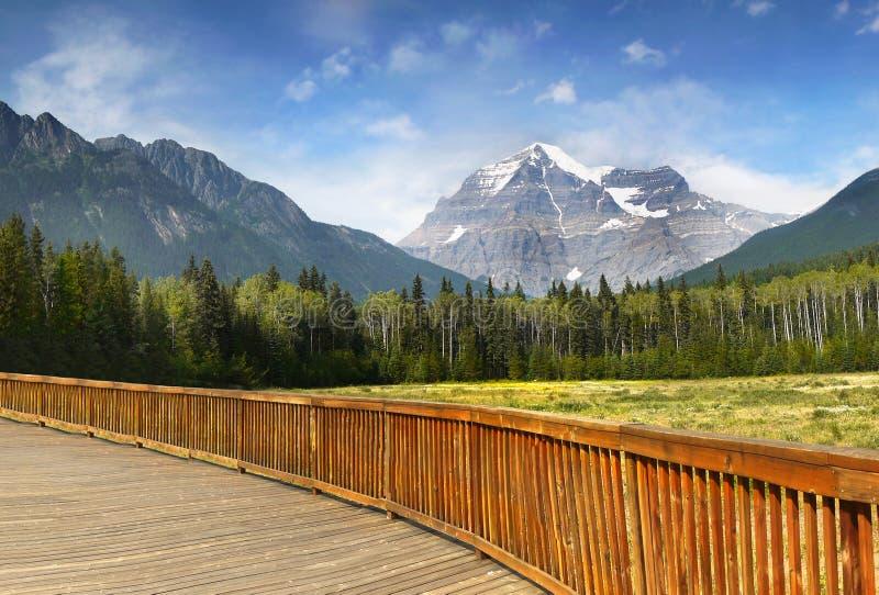 Góry Robson park, Kanadyjskie Skaliste góry zdjęcia stock
