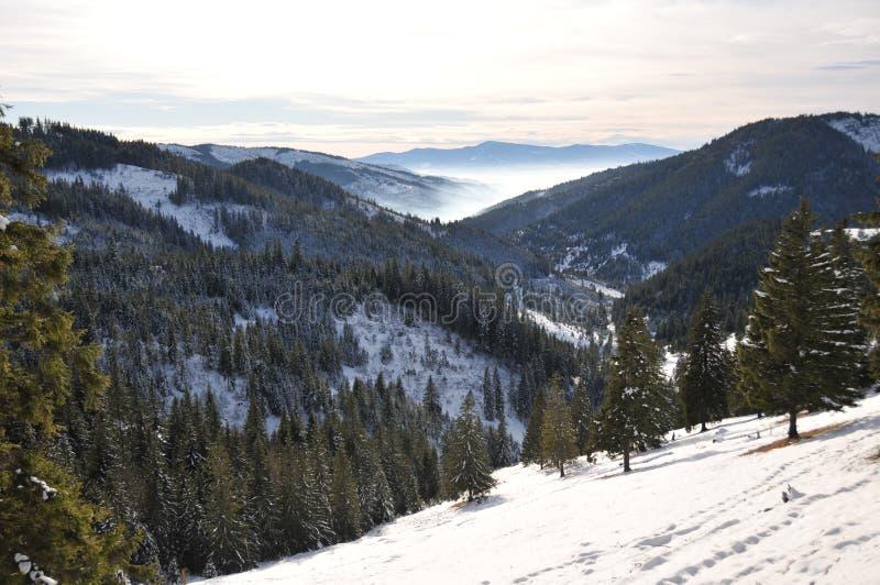 góry Romania zdjęcie royalty free