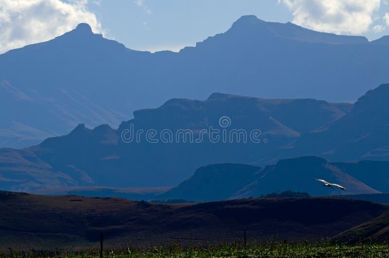 góry są nim błękitna obraz royalty free