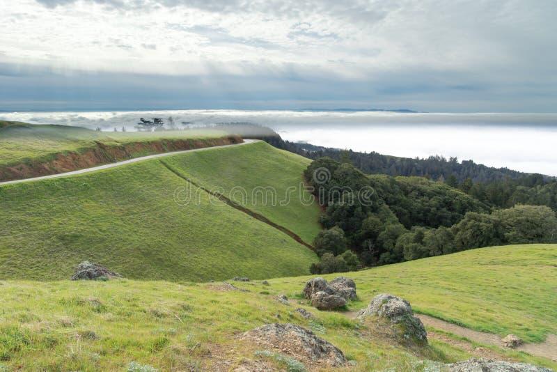Góry Tamalpais krajobraz w wintertime zdjęcia royalty free