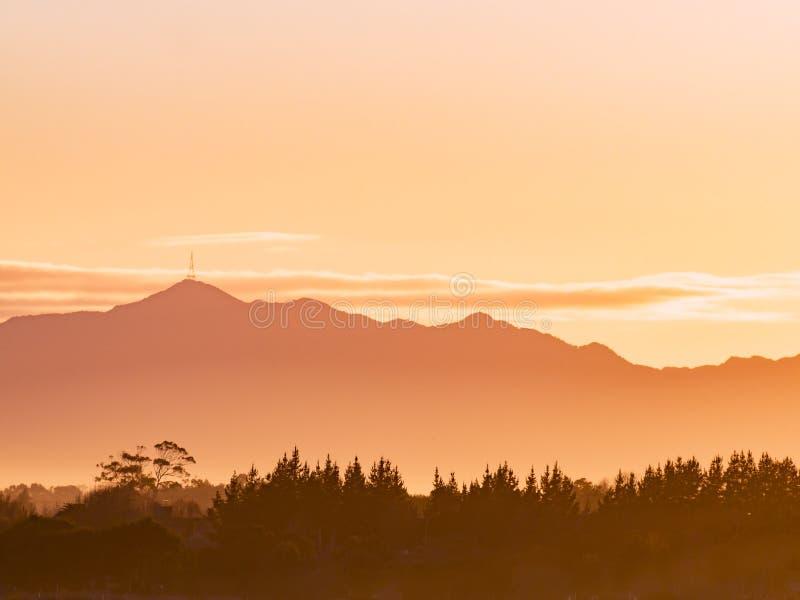 Góry Te Aroha widok górski nad lasem obraz royalty free