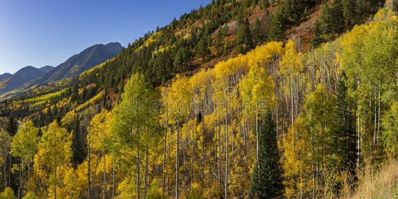 Góry w Aspens na McClure Pass zdjęcia royalty free