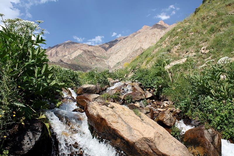 Góry w Iran obrazy stock