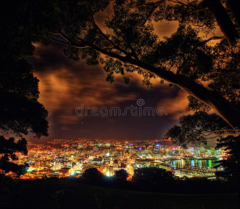 Góry Wiktoria punkt obserwacyjny Wellington Nowa Zelandia fotografia stock