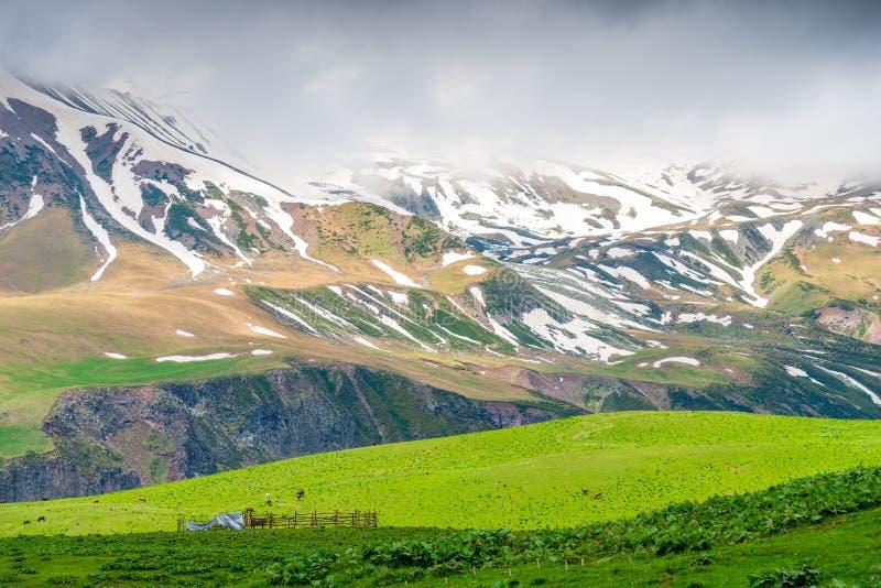 Góry wysokie, zielone łąki piękny krajobraz zdjęcie royalty free