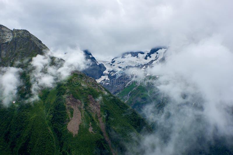 Góry zielona grań zakrywająca sosnami w chmurach i mgle Dombay, Karachay-Cherkessey, Rosja obraz royalty free