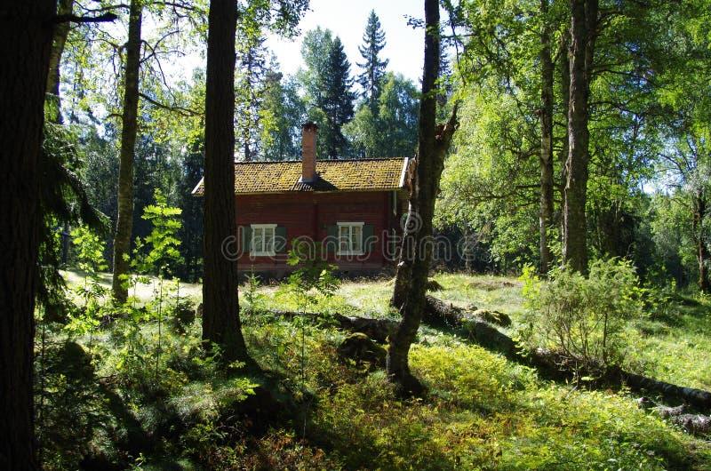 Gömd journalkabin i en skog royaltyfri fotografi