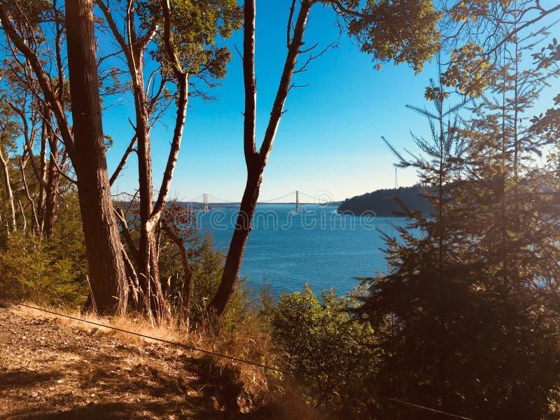 Gömd sikt av bron för Tacoma trångt pass royaltyfri foto