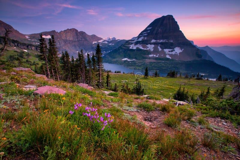 Gömd sjöslinga, glaciärnationalpark, Montana, USA royaltyfri bild