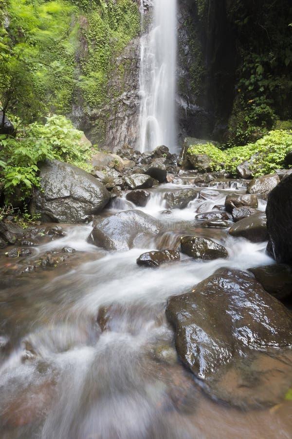 Gömda härliga vattenfall på norr Bali royaltyfria bilder