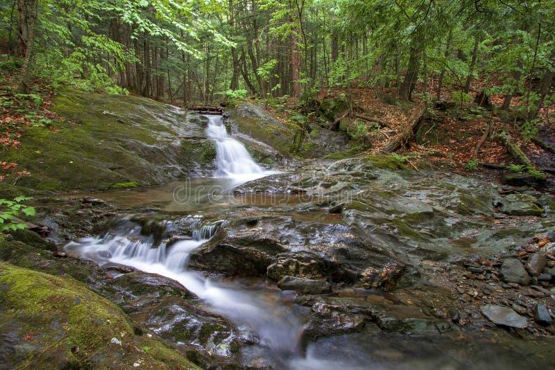Gömda vattenfall i skogen royaltyfria foton