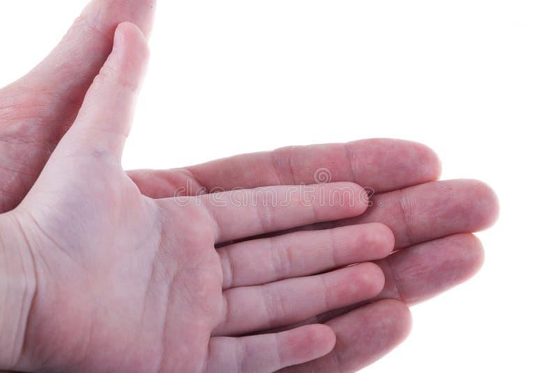 Gömma i handflatan av ungar hand och vuxen människamannen som isoleras på vit arkivfoton