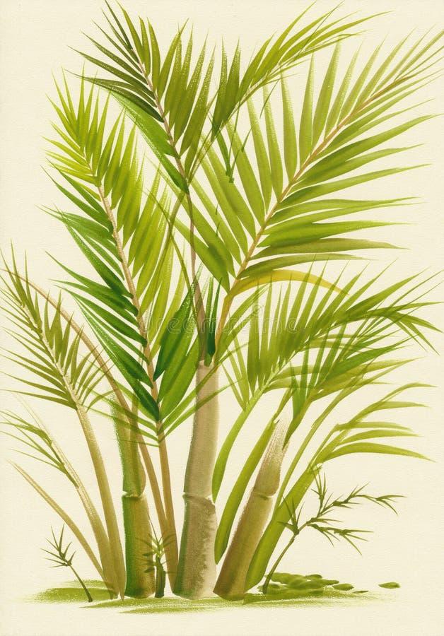 Gömma i handflatan bambuvattenfärgmålning vektor illustrationer
