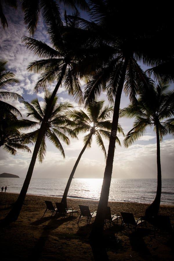 Gömma i handflatan den Beachfront lilla viken arkivbild