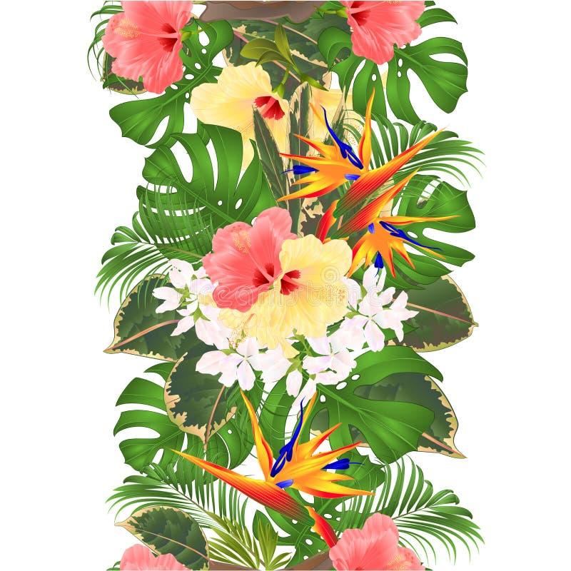 Gömma i handflatan den sömlösa bakgrundsbuketten för den tropiska vertikala gränsen med rosa tropiska blommor och den gula hibisk royaltyfri illustrationer