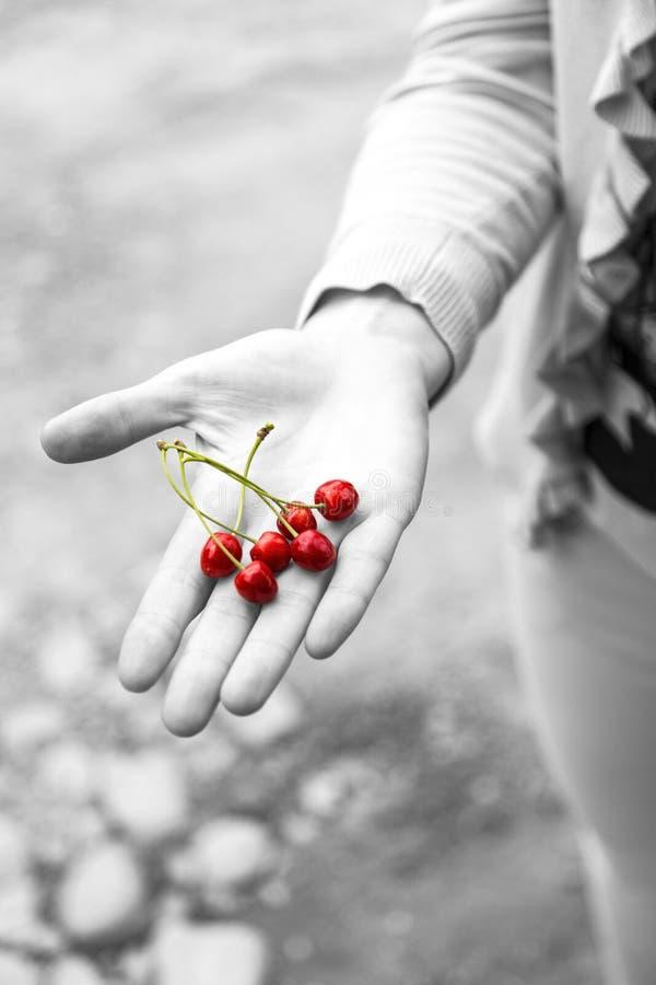 Gömma i handflatan hållande körsbär för ung kvinna i henne royaltyfri fotografi