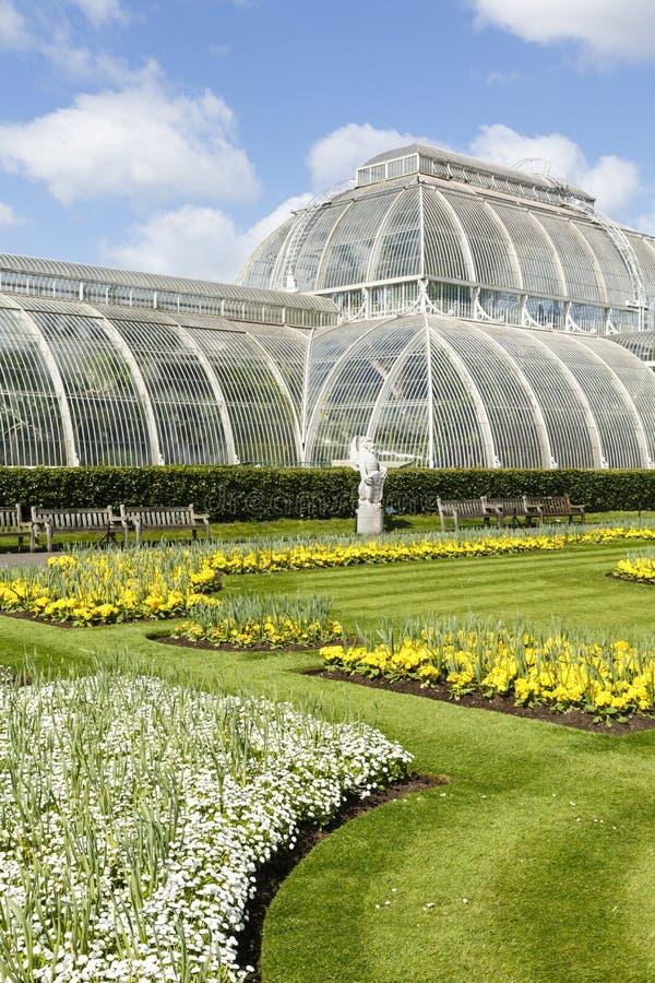 Gömma i handflatan husKew botaniska trädgårdar royaltyfria foton