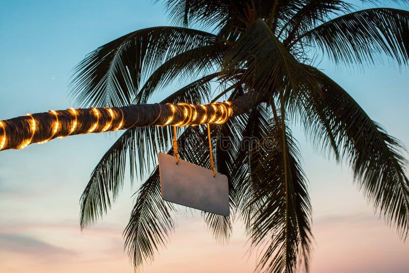 Gömma i handflatan med ficklampor på stranden arkivfoton