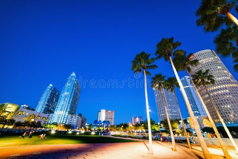 Gömma i handflatan, och skyskrapor i Curtis Hixon strand parkerar i Tampa på natten royaltyfria bilder