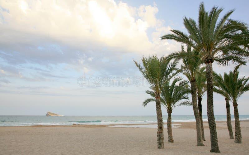 Gömma i handflatan och strandCostaBlanca i Benidorm Spanien royaltyfri fotografi