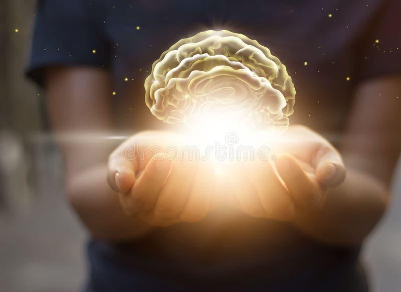 Gömma i handflatan omsorg och skydda den faktiska hjärnan, innovativ teknologi i sc royaltyfria foton