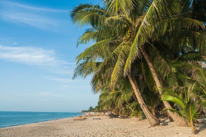 Gömma i handflatan på stranden, den Ko Samui ön fotografering för bildbyråer