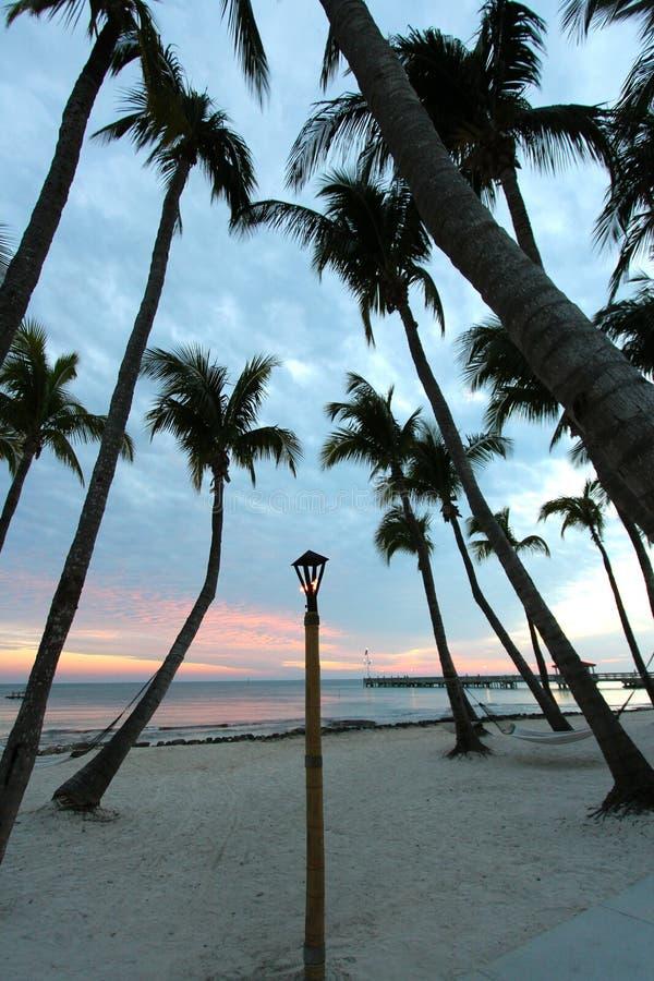 Gömma i handflatan på stranden på solnedgången arkivfoton