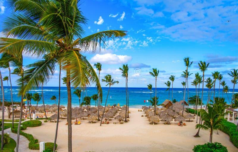 Gömma i handflatan paraplyer på den sandiga stranden av Dominikanska republiken royaltyfri bild