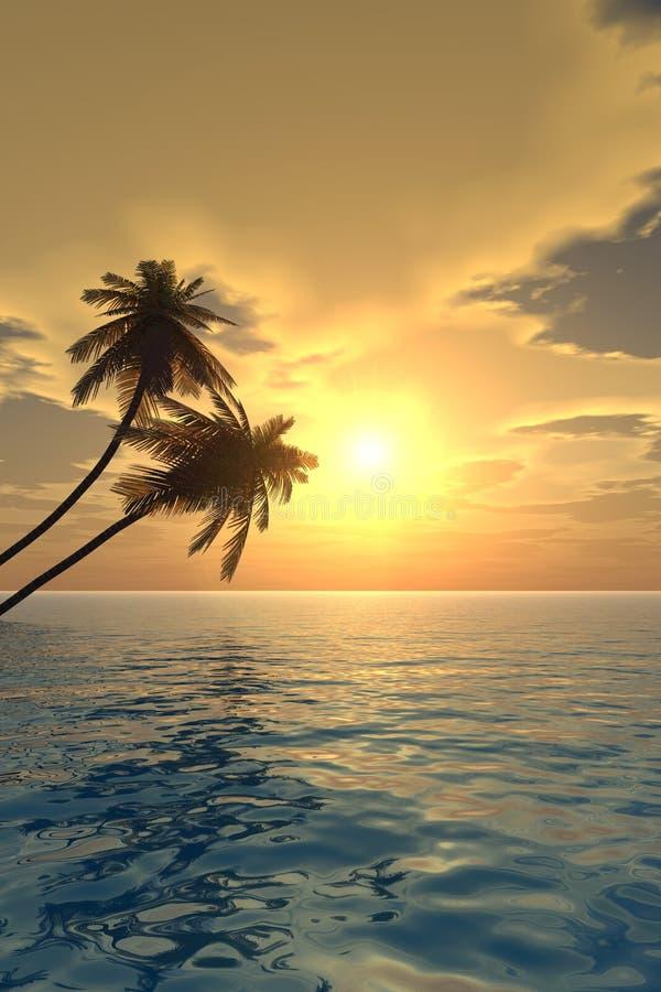 gömma i handflatan sunset2 v arkivbilder